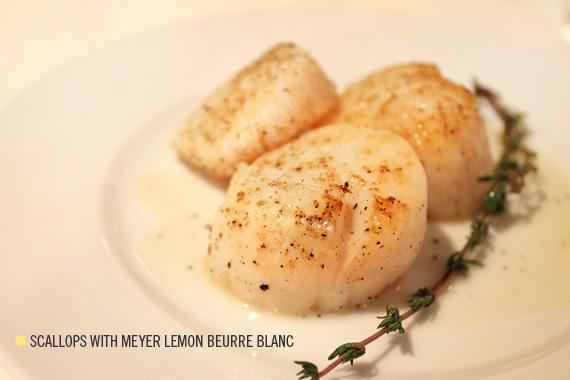 eating this scallops with meyer lemon beurre blanc