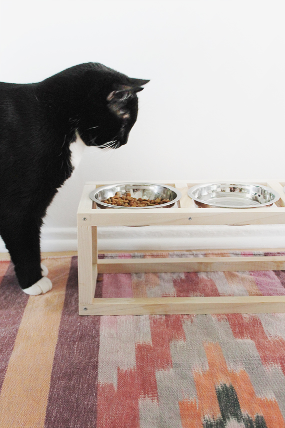how to stop dog from tipping food bowl