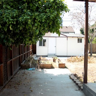 our backyard - before