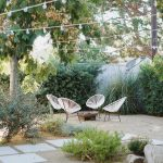 our backyard : updates